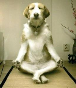 Inner Peace - Yoga with Max