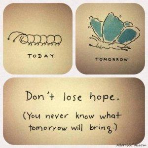 a catipillar has hope