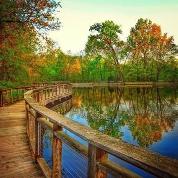 Autumn Duane Hallock